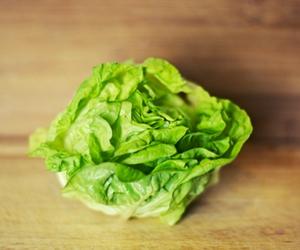 Lettuce for Insomnia