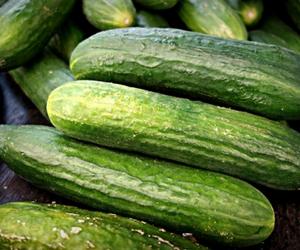 Cucumber for Low Sugar Juices For Diabetics
